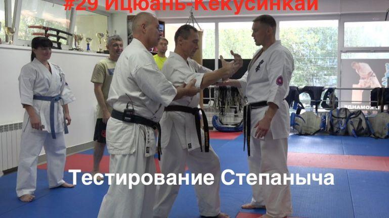 #29 ИЦЮАНЬ-КЁКУСИНКАЙ