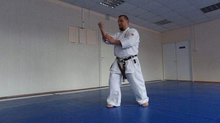 Окинавское карате. Ката Папурен - ката стиля кунг-фу Белый журавль