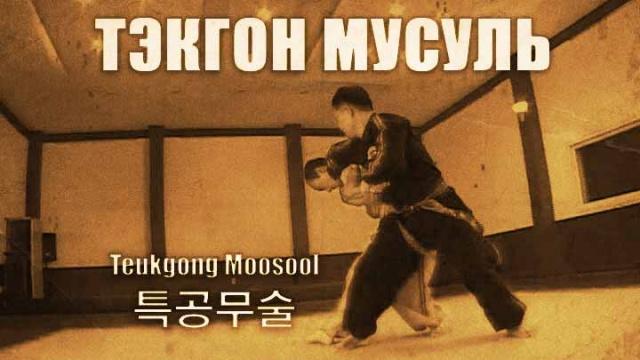 25 боевых приемов Тэкгон Мусуль
