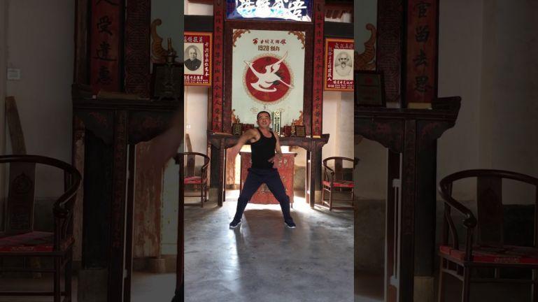 Кунг-фу Юнчунь байхэ цюань