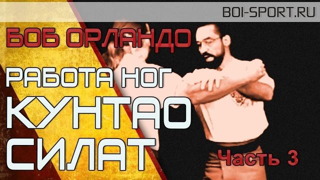 Боб Орландо. Боевая работа ног из Кунтао и Силат. Часть 3