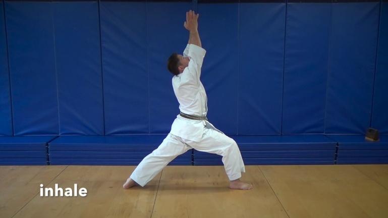 Йога для боевых искусств