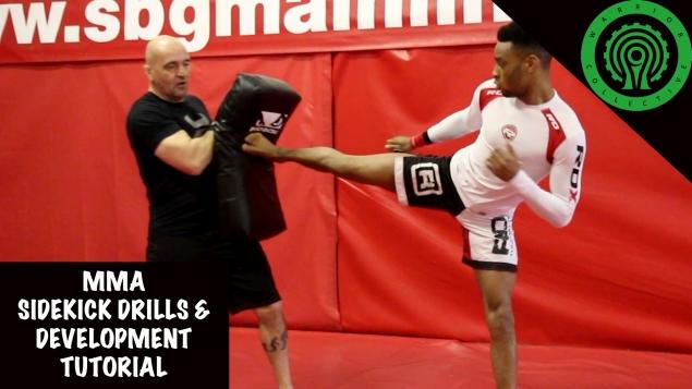 Видео уроки MMA. Постановка бокового удара ногой
