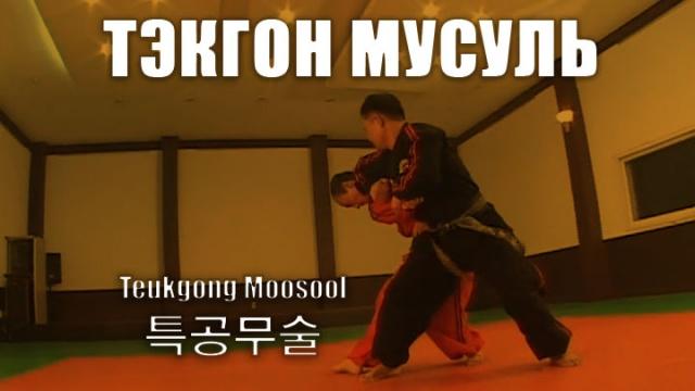 Тэкгон Мусуль - рукопашный бой корейского спецназа