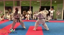 Комбинации ударов ногами в карате