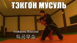 Тэкгон Мусуль. Боевая техника.