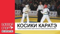 Первый командный Кубок среди школьных команд Ульяновской области по Косики Каратэ