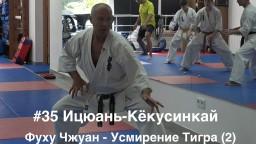#35 ИЦЮАНЬ-КЁКУСИНКАЙ