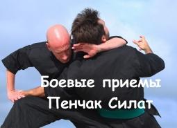 Боевые приемы Пенчак-Силат