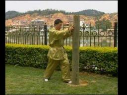 Тренировка на столбе в ушу Тунбэй цюань