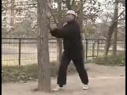 Тренировка с деревом в ушу Синъи Люхе Цюань