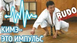 Олег Цой. Кимэ - это импульс