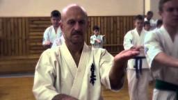 BASIC EXERCISES HAJIME KAZUMI (PENZA)